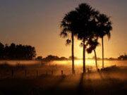 Emigratieverhaal Peter in Paraguay